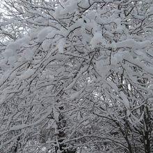 La Neige-Le Regard de Rando-Evasion