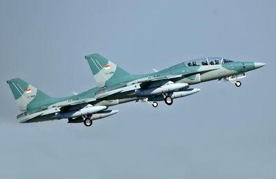 L'Indonésie commande 6 avions d'entraînement T-50 coréens produits par KAI