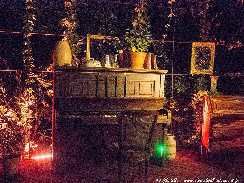 CHAUMONT SUR LOIRE : photos du FESTIVAL DES JARDINS en lumière