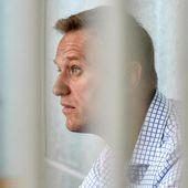 Le prix Sakharov du Parlement européen 2021 décerné à l'opposant russe Alexeï Navalny