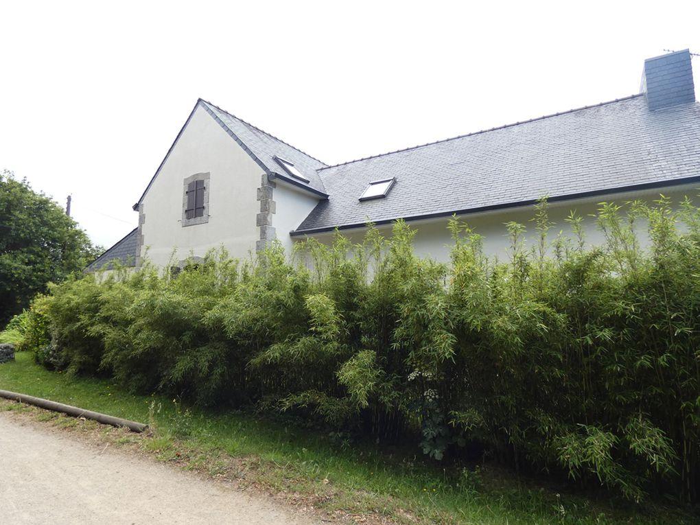 voies vertes et bord de mer à Concarneau