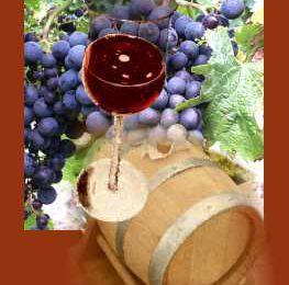 Quel bon vin vous amène à Bergerac