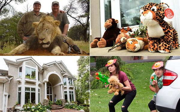 Walter Palmer, stuffed animals left in front of his dental practice and protesters