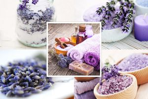 Lovely uses of lavender at home