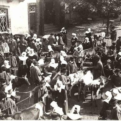 1ère commission municipale du marché du Square Botrel (fin)