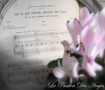Album - au-jardin