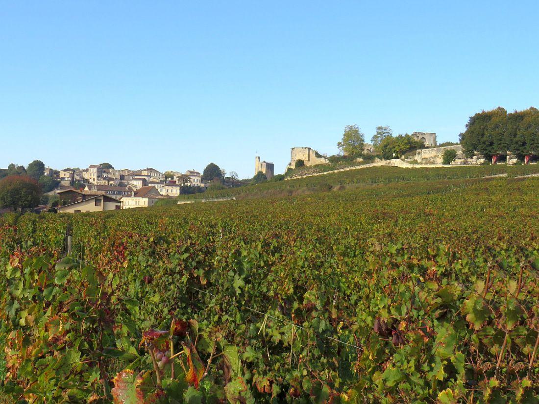 Célèbre village médiéval situé au coeur du vignoble bordelais
