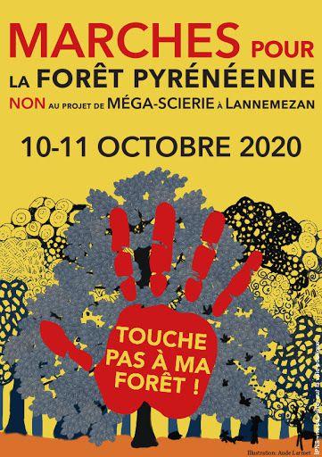 Dans les Pyrénées, un projet de scierie géante menace les équilibres forestiers