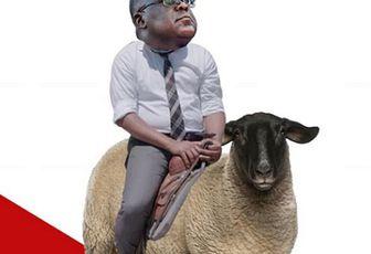 RDC: 680.000 dollars/mois pour Alias Kabila, Tshilombo et les Bena Mpuka KO debout?
