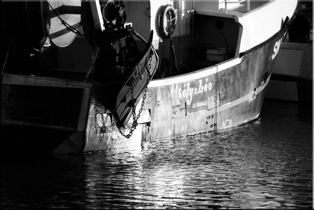 Album - Port de Peche