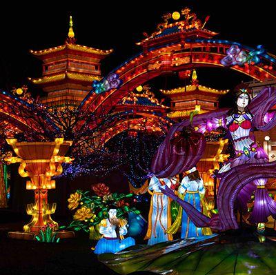 Le Festival des Lanternes de Chine revient pour une toute nouvelle édition !