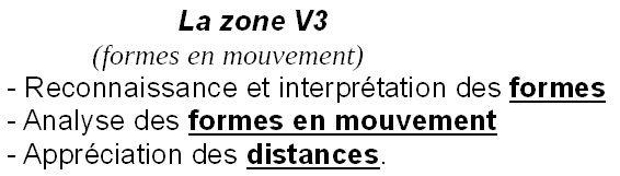 Zone V3
