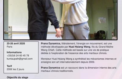 Stage de Prana Dynamics avec Huai Hsiang Wang