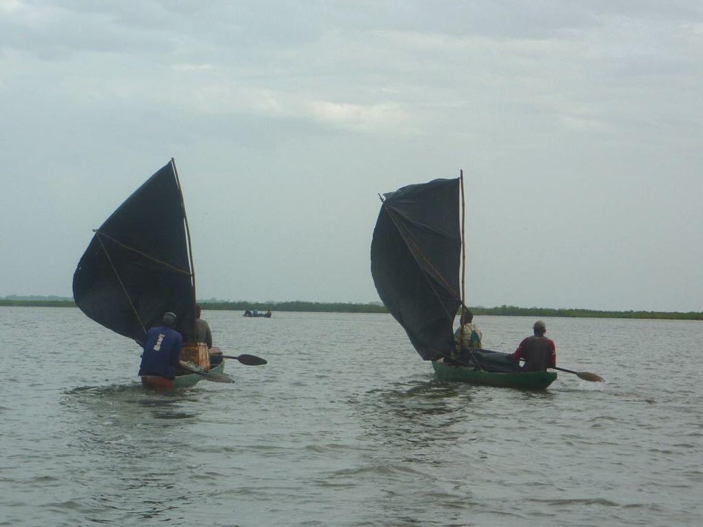 sur le fleuve Casamance en pirogue