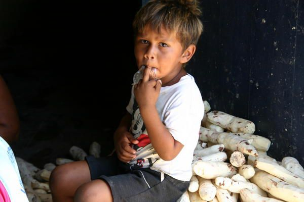 Photo : l'enfant et le manioc