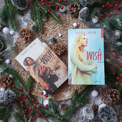 Wish, tome 2 : Evie - Audrey Carlan