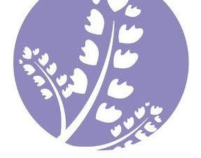 B-TERP, la 1ere marque française de presses à extraction d'huiles essentielles (rosin) !