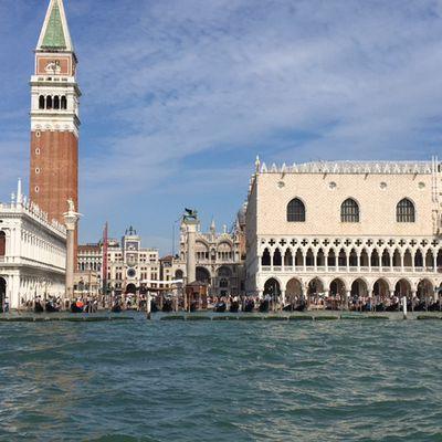 Festival de Venise : La Mostra désenchantée !