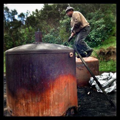 Tévelave : sur le chemin des charbonniers
