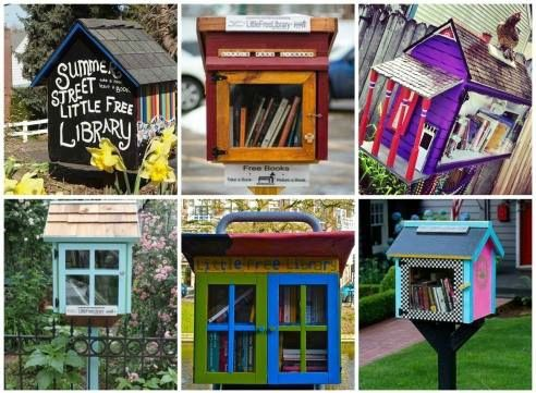 LES BIBLIOTHEQUES INSOLITES