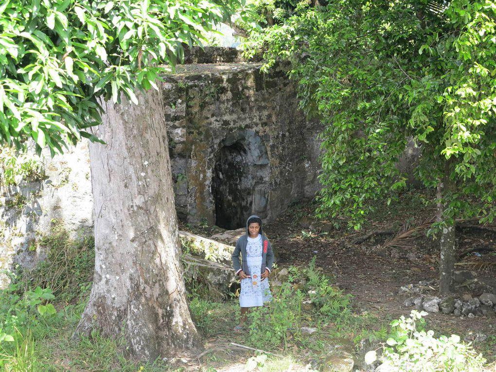plantation Kelly, noix de muscade et kenari, fort Hollandia