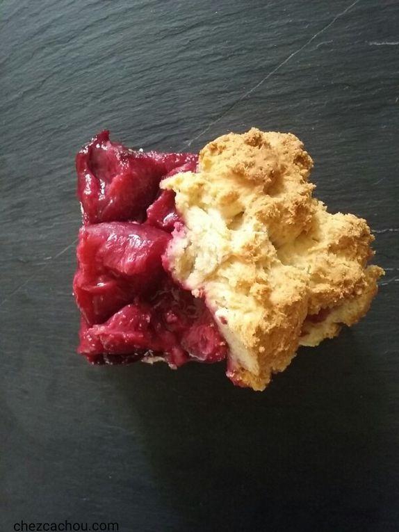 Ciasto cynamonowe ze śliwkami ou gâteau à la cannelle aux prunes