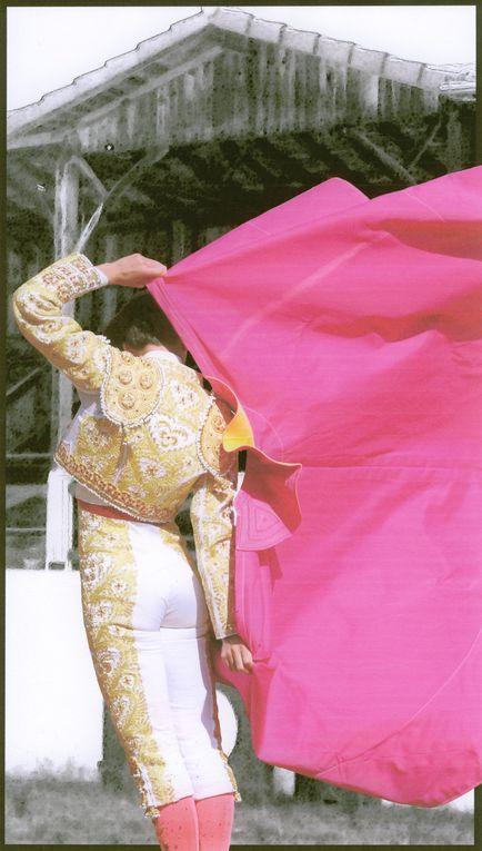 Album - 2010 / 06 - Concours-d-affiches--Les-projets