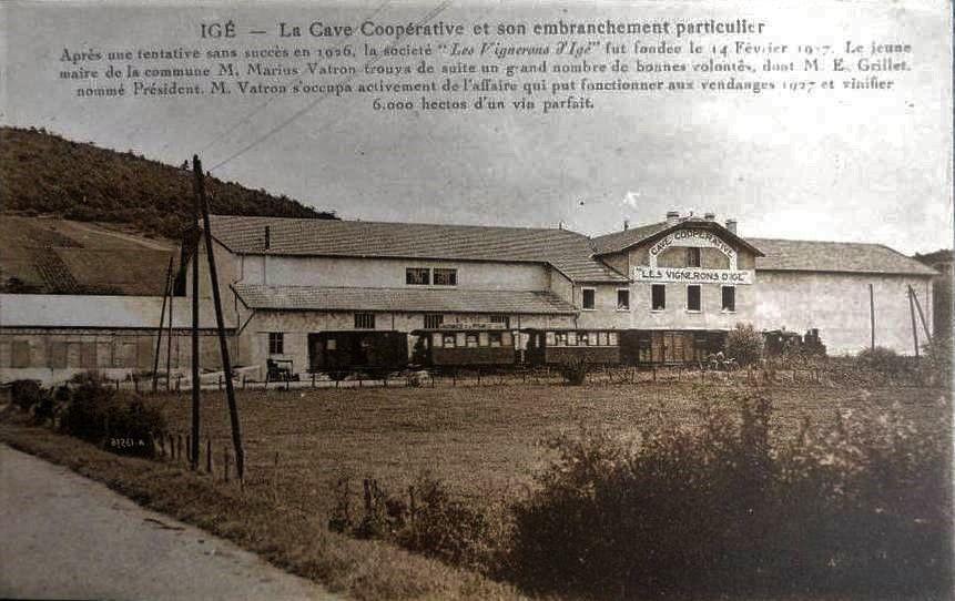 Cave coopérative d'Igé.
