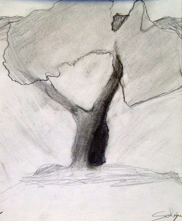 """2011.2012 """"L'ART VEGETAL"""""""