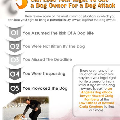 5 Situations In Which You Can Lose Your Right To Sue A Dog Owner For A Dog Attack