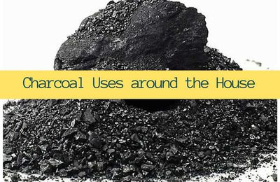 Charcoal Uses around the House