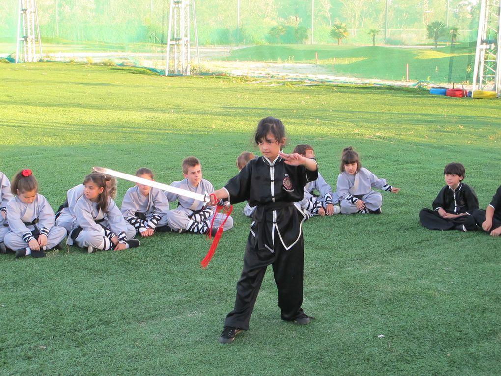 Shifu Senna (Brasileiro), desde 1979, dedicado la Arte Marcial China.  Clases de Kung Fu Tradicional Shaolin del Sur, Maestro senna, tiene un programa de entrenamiento que permite a los nuevos aprendices abordar el complejo arte del Kung Fu