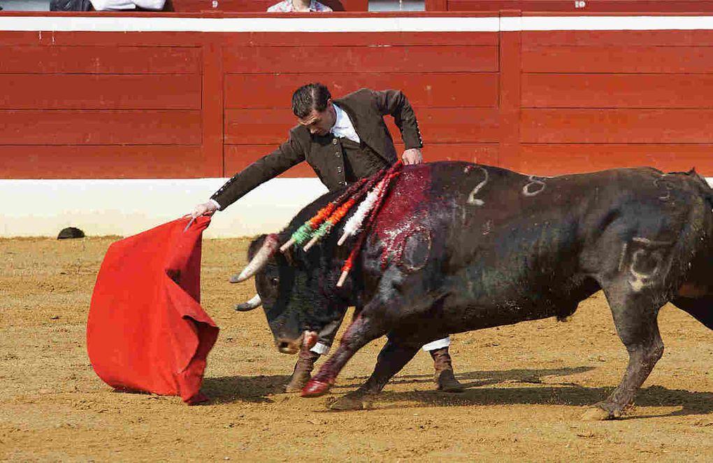 El Monteño, le retour sur ses terres.