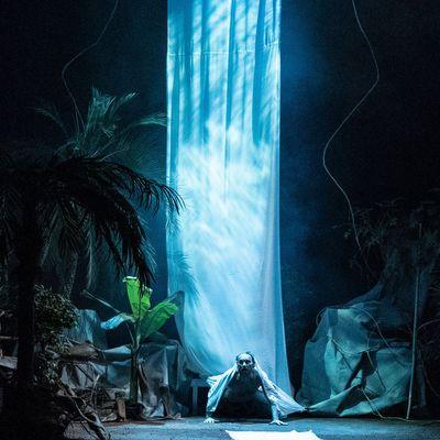 """""""Retour d'Amazonie"""" Le Piano'cktail - 27/02/ Images François Guillement"""