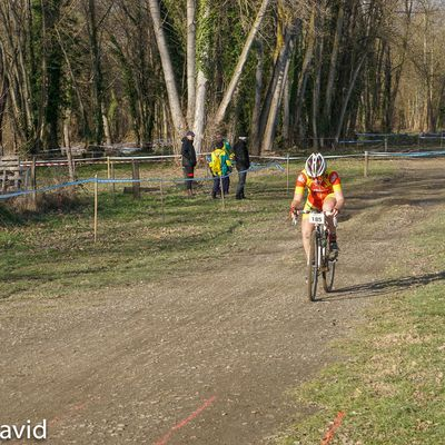 photos. regional CX tostadium