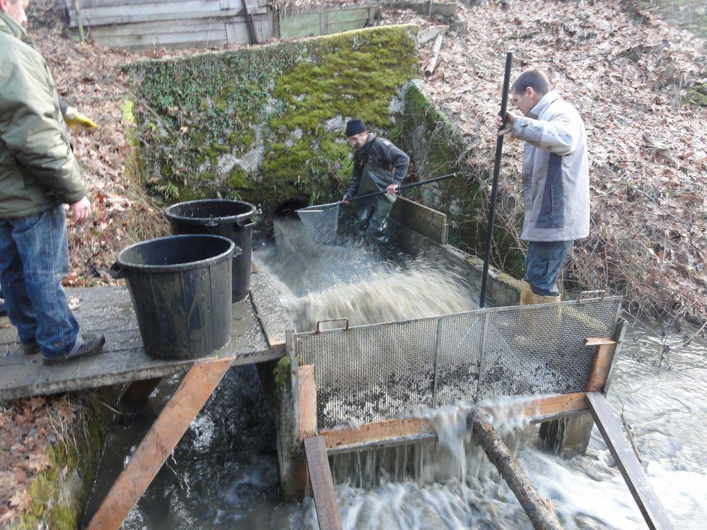 Vidange de l'étang du Moulin de la Jarousse