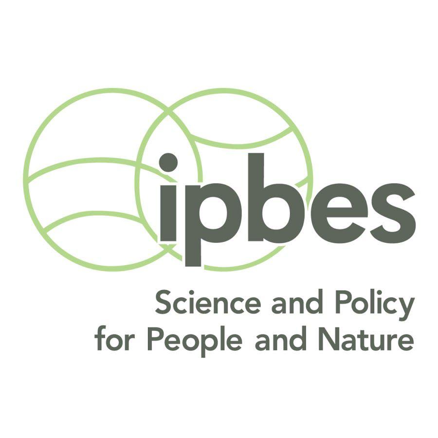 couverture de duckduckgo.com…et ici… Plateforme intergouvernementale scientifique et politique sur la biodiversité et les services écosystémiques (IPBES)