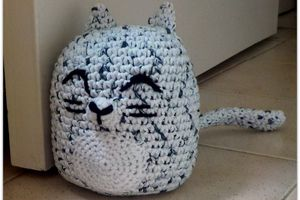 le chat Cham'Chall #