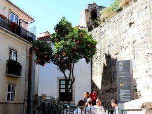 Façades décorées, Quartier de l'Alfama à Lisbonne (Portugal)
