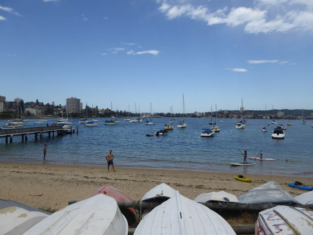 14 – Ballade de Manly Beach à Sandy Beach