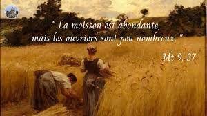 Evangile du Mardi 06 Juillet « La moisson est abondante, mais les ouvriers sont peu nombreux » (Mt 9, 32-38) #parti2zero #evangile
