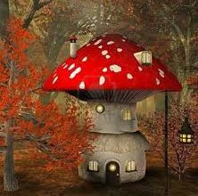 Ricetta: Crema di funghi
