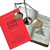 Lettre ouverte au Président François Hollande : Abrogez l'article 30-3 du Code civil
