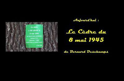 8 mai 1945 : commémoration de la victoire sur le nazisme et du massacre de Sétif, Bernard Deschamps raconte
