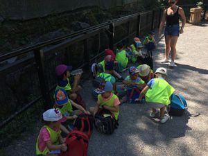 Zoo De Maubeuge Buisson 1 Aout