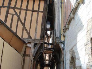 La rue des chats à Troyes (cliquer pour voir les photos)