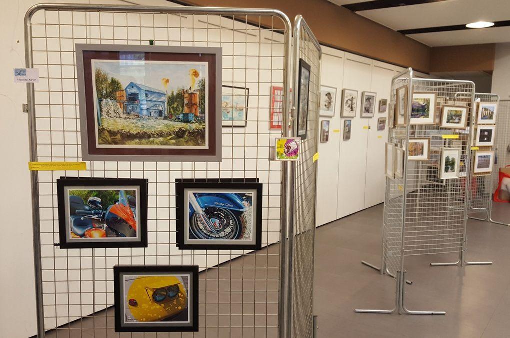 LES AMIS D'HOM.ARTS EXPOSENT...LEURS REFLETS...EN PHOTOS...N° 1