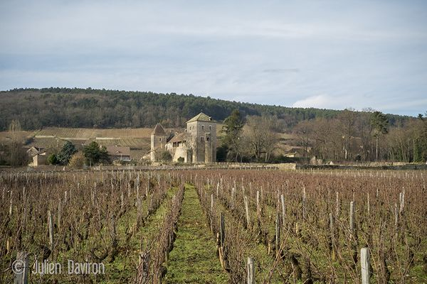 Visiting few caves in Bourgogne wine area