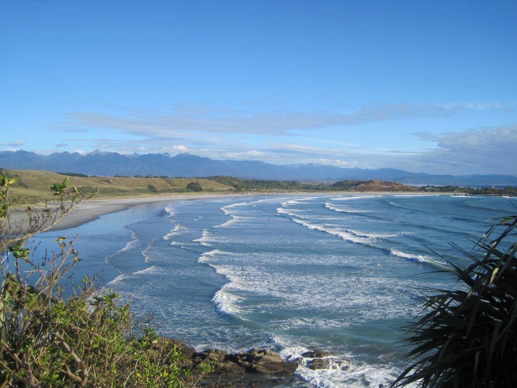Un mois chez les Kiwis