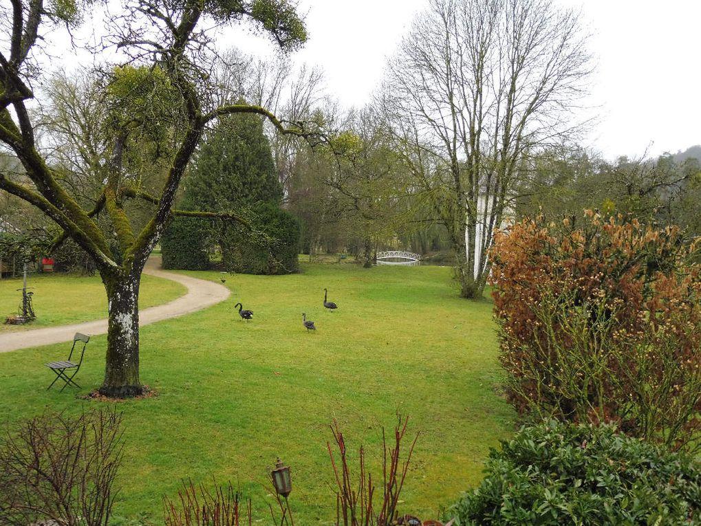Découvrez le parc, nous vous invitons à faire le tour de l'étang au fil des saisons...